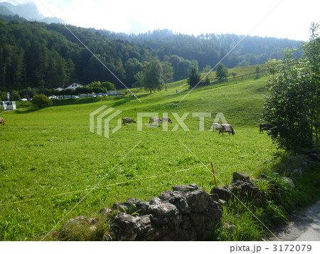 アルプスの少女ハイジの故郷の写真素材 Pixta