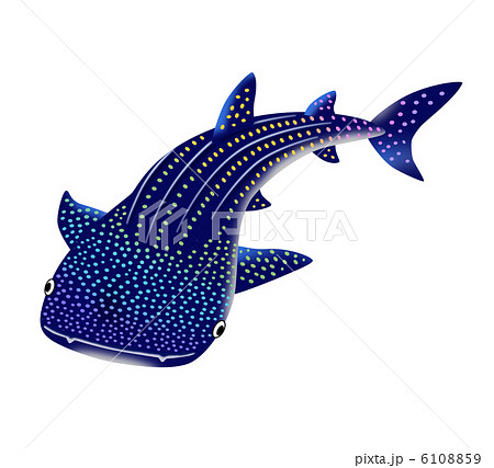 ジンベエザメのイラスト素材 Pixta