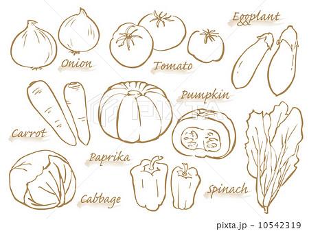 ベクター 野菜 線画 手描きのイラスト素材 Pixta