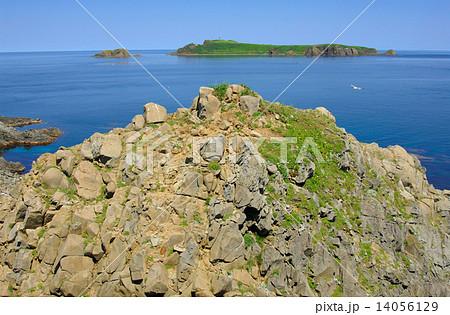 海驢島の写真素材 - PIXTA