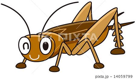 コオロギ 蟋蟀 昆虫 虫の写真素材 Pixta