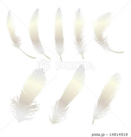 フェザー 鳥の羽 しなやか 鳥の羽根のイラスト素材 Pixta