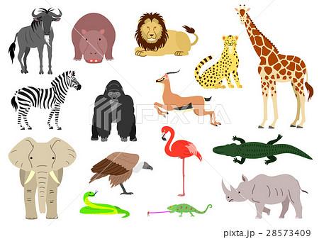 アフリカの動物セット カラー 素材