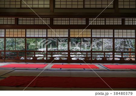 純日本式庭園の写真素材 - PIXTA