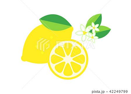 レモンのイラスト素材集 Pixtaピクスタ