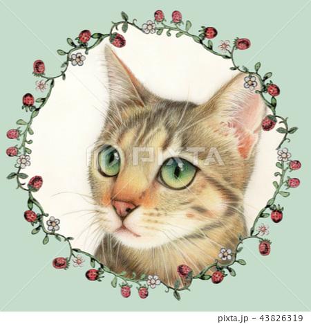 色鉛筆画 リアルイラスト 猫 花のイラスト素材 Pixta
